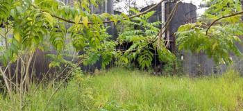 Laudo ambiental cetesb